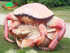 Custom Inflatable Crab For Decoration. Top Quality, 3 Years Warranty.